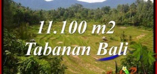 Beautiful 11,100 m2 LAND SALE IN Tabanan Penebel TJTB320