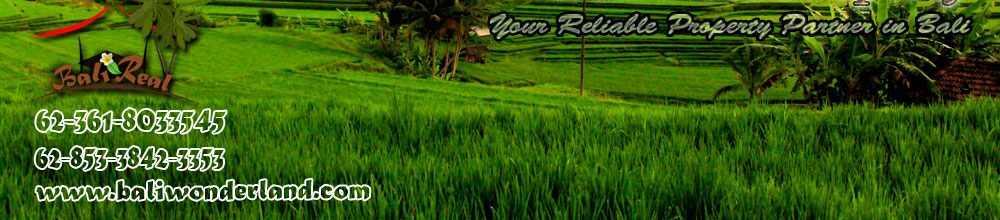 Bali property & land for sale